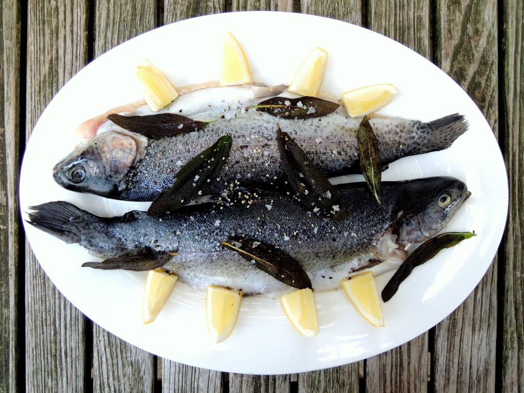 Fish, trout, sauteed trout with sage and white wine 1
