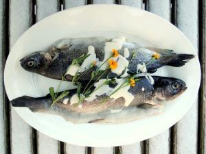 Fish, trout, truites Normandes a la creme et a l'estragon 1