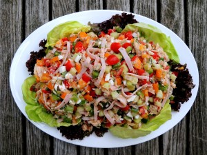 Salads, chopped, pipirranea Jaenera 1