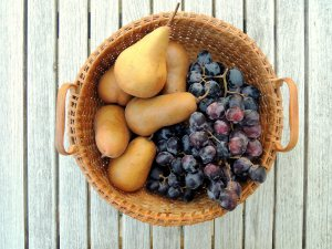 Fruit bowls, bosc pears and black grapes 1